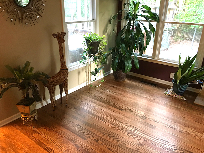 Welcome to Our Hardwood Flooring Services Blog